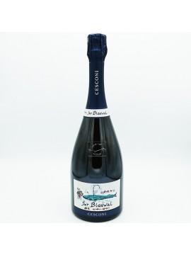 """Trento DOC Riserva """"Der Blauwal"""" 2011 - Cesconi - Bottiglia Vino 750ml"""